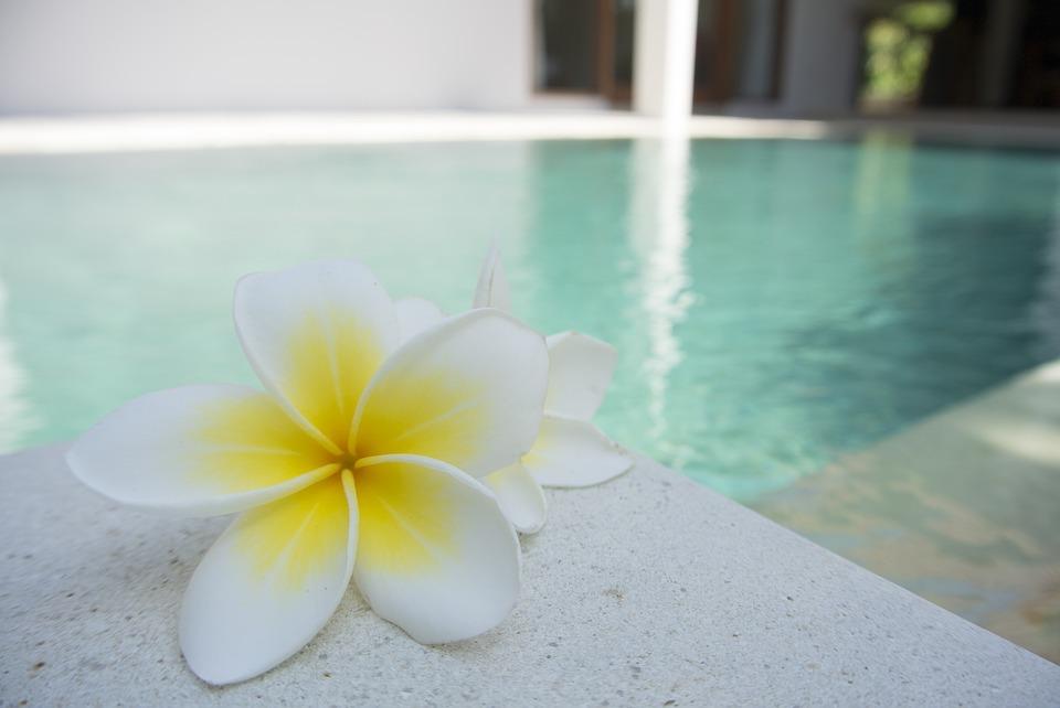 květ u bazénu